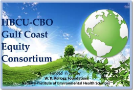 The logo of the HBCU-CBO Gulf Coast Equity Consortium, under which ACTS received a Kellogg Foundation grant.